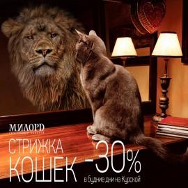 Стрижка кошек  - 30 %