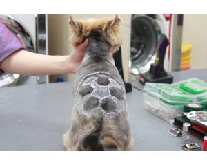 Выстригание узора-орнамента на шерсти