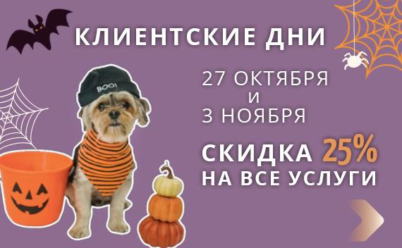 В честь Хэллоуина