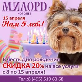 Скидка 20% в честь дня рождения!